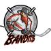 New Jersey Bandits